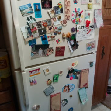 The Refrigerator In The Room